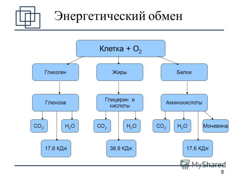 9 Энергетический обмен Клетка + О 2 ГликогенЖирыБелки Глюкоза Глицерин и кислоты Аминокислоты СО 2 Н2ОН2О Н2ОН2О Н2ОН2ОМочевина 17,6 КДж38,9 КДж17,6 КДж