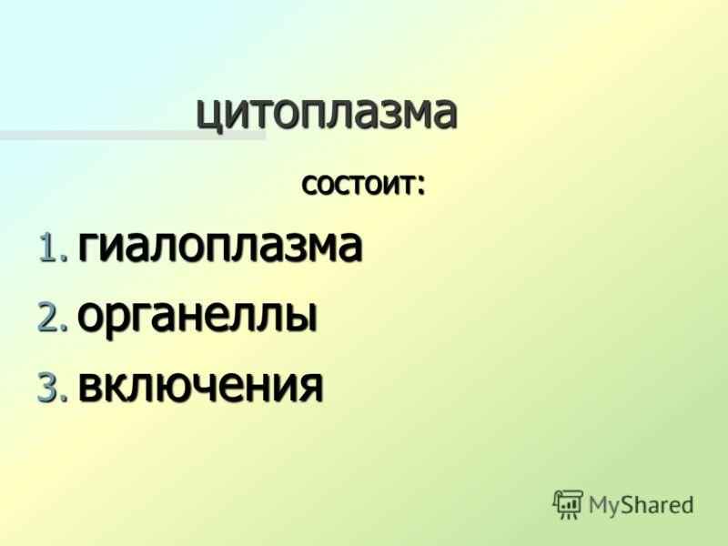 цитоплазма состоит: 1. гиалоплазма 2. органеллы 3. включения