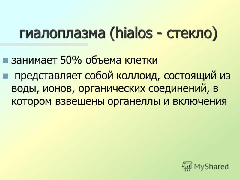 гиалоплазма (hialos - стекло) занимает 50% объема клетки представляет собой коллоид, состоящий из воды, ионов, органических соединений, в котором взвешены органеллы и включения