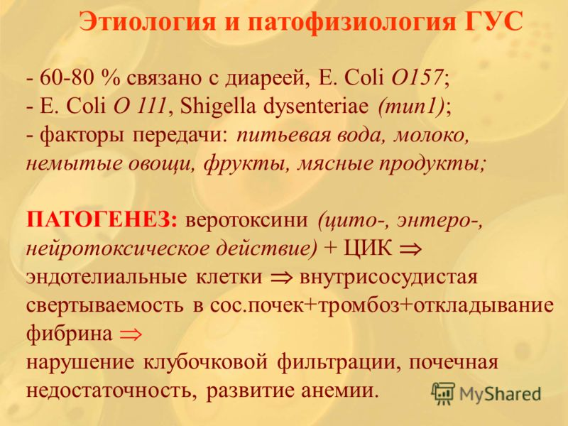 - 60-80 % связано с диареей, E. Coli O157; - Е. Coli O 111, Shigella dysenteriae (тип1); - факторы передачи: питьевая вода, молоко, немытые овощи, фрукты, мясные продукты; ПАТОГЕНЕЗ: веротоксини (цито-, энтеро-, нейротоксическое действие) + ЦИК эндот