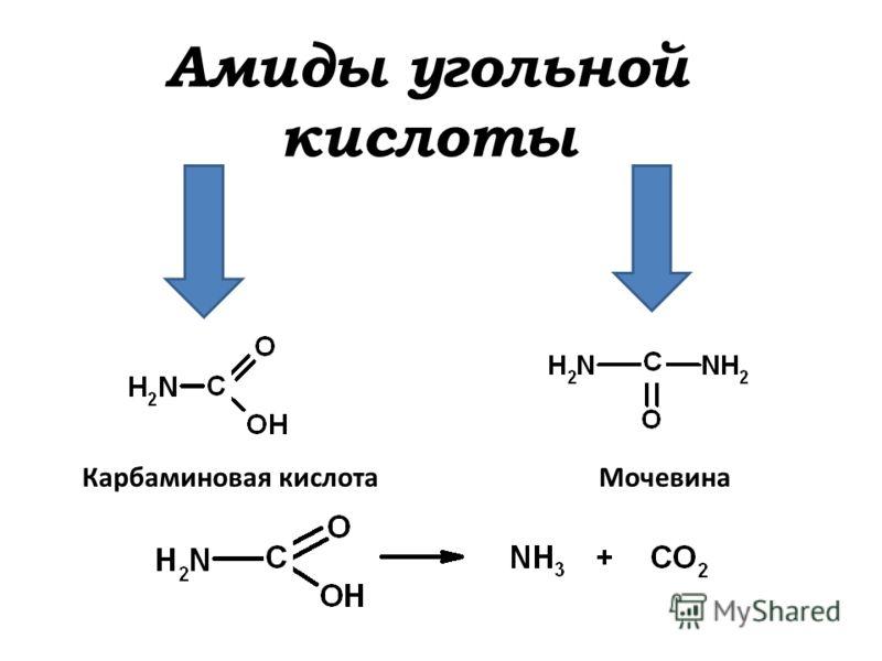 Амиды угольной кислоты Карбаминовая кислотаМочевина