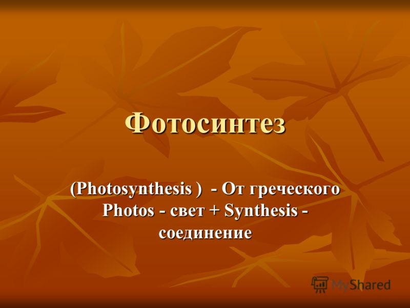 Фотосинтез (Photosynthesis ) - От греческого Photos - свет + Synthesis - соединение