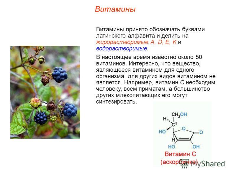 Витамины Витамины принято обозначать буквами латинского алфавита и делить на жирорастворимые А, D, E, K и водорастворимые. В настоящее время известно около 50 витаминов. Интересно, что вещество, являющееся витамином для одного организма, для других в