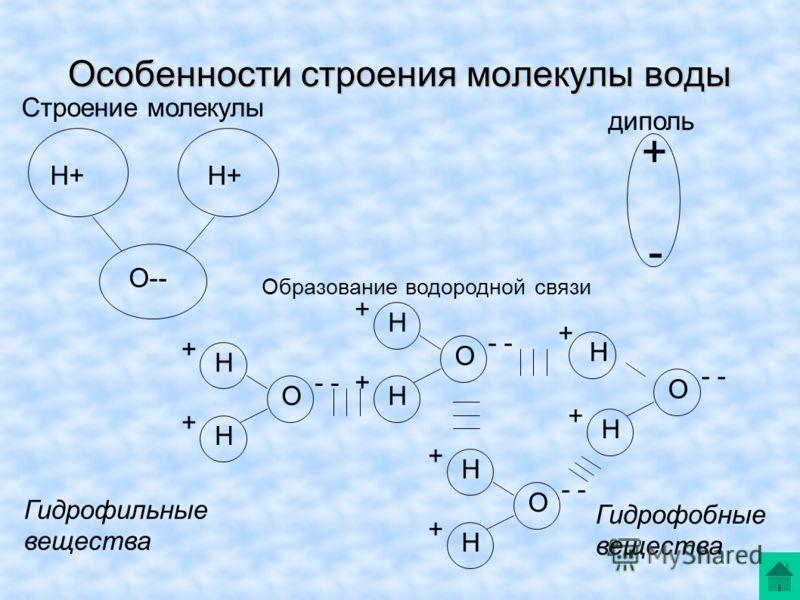Особенности строения молекулы воды Н+ О-- Строение молекулы + - диполь Образование водородной связи - Н Н О + + Н Н О + + Н Н О + + Н Н О + + Гидрофильные вещества Гидрофобные вещества