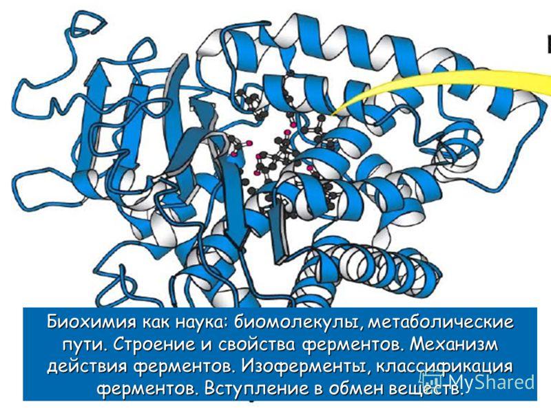 Биохимия как наука: биомолекулы, метаболические пути. Строение и свойства ферментов. Механизм действия ферментов. Изоферменты, классификация ферментов. Вступление в обмен веществ.