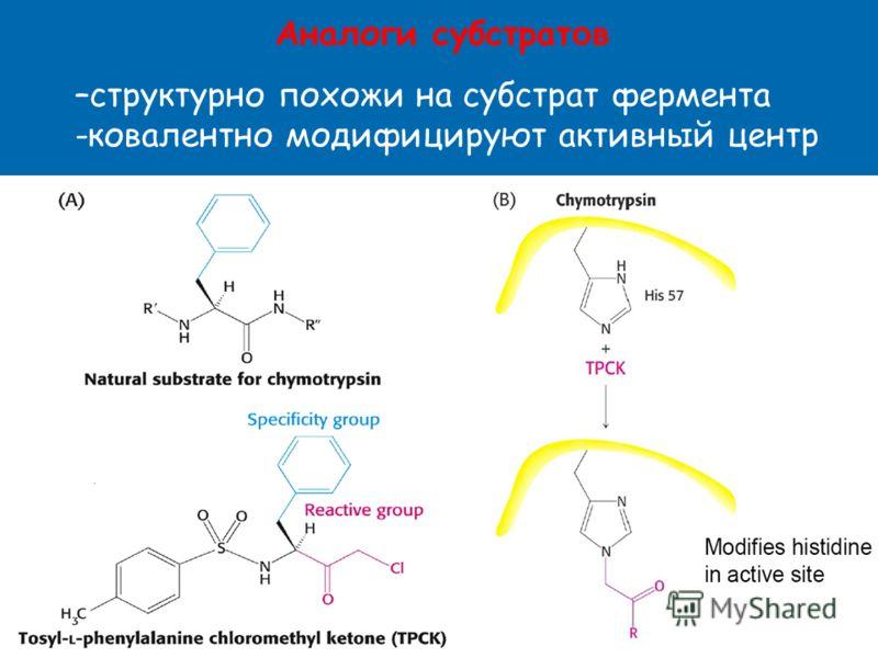 Аналоги субстрат о в –структурно похожи на субстрат фермента -ковалентно модифицируют активный центр