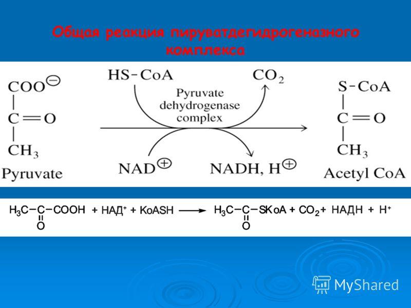 Общая реакция пируватдегидрогеназного комплекса