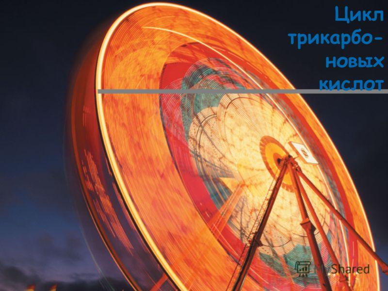 Цикл трикарбо- новых кислот