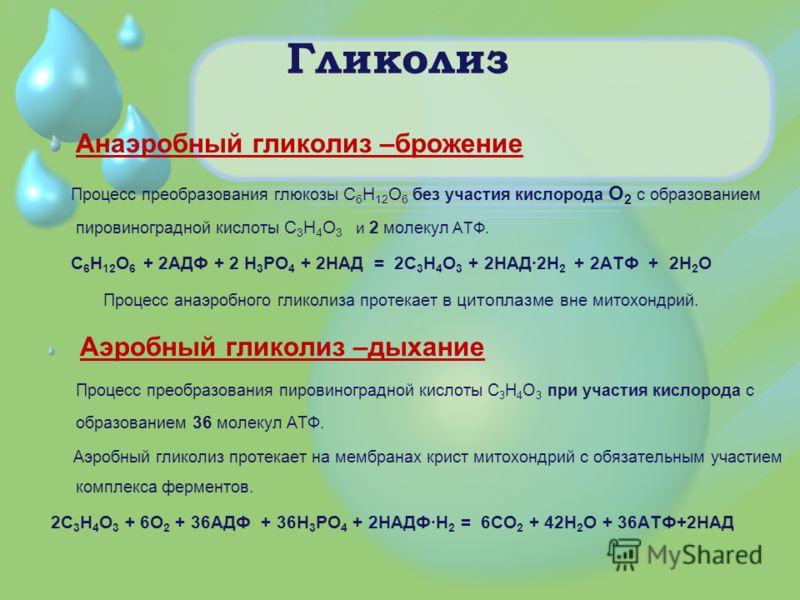Гликолиз Анаэробный гликолиз –брожение Процесс преобразования глюкозы С 6 Н 12 О 6 без участия кислорода О 2 с образованием пировиноградной кислоты С 3 Н 4 О 3 и 2 молекул АТФ. С 6 Н 12 О 6 + 2АДФ + 2 Н 3 РО 4 + 2НАД = 2С 3 Н 4 О 3 + 2НАД·2Н 2 + 2АТФ