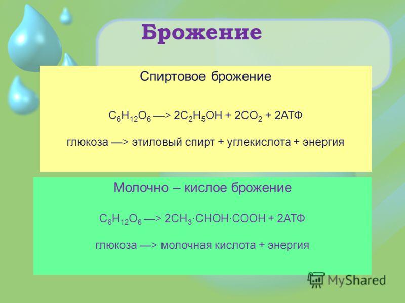 Брожение Спиртовое брожение C 6 H 12 O 6 > 2C 2 H 5 OH + 2CO 2 + 2АТФ глюкоза > этиловый спирт + углекислота + энергия Молочно – кислое брожение C 6 H 12 O 6 > 2CH 3 ·CHOH·COOH + 2АТФ глюкоза > молочная кислота + энергия