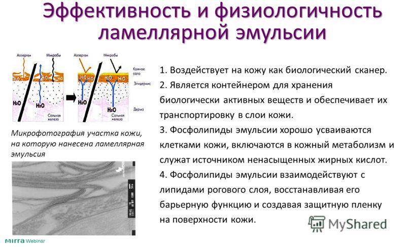 Эффективность и физиологичность ламеллярной эмульсии 1. Воздействует на кожу как биологический сканер. 2. Является контейнером для хранения биологически активных веществ и обеспечивает их транспортировку в слои кожи. 3. Фосфолипиды эмульсии хорошо ус