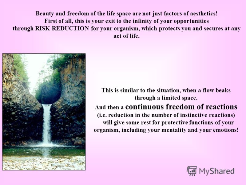 Beauty and freedom of the life space are not just factors of aesthetics! First of all, this is your exit to the infinity of your opportunities through RISK REDUCTION for your organism, which protects you and secures at any act of life. This is simila