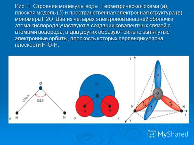 Рис. 1. Строение молекулы воды. Геометрическая схема (а), плоская модель (б) и пространственная электронная структура (в) мономера H2O. Два из четырех электронов внешней оболочки атома кислорода участвуют в создании ковалентных связей с атомами водор