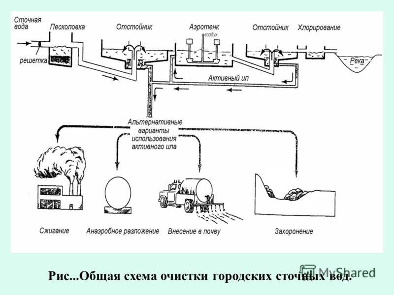 Рис...Общая схема очистки городских сточных вод.