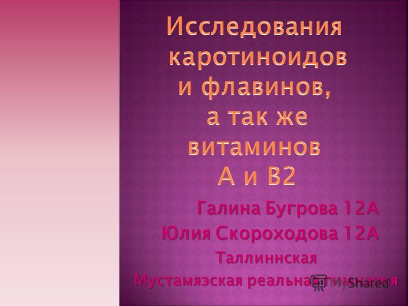 Галина Бугрова 12А Юлия Скороходова 12А Таллиннская Мустамяэская реальная гимназия