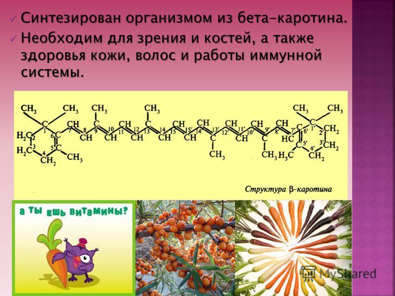 Синтезирован организмом из бета-каротина. Синтезирован организмом из бета-каротина. Необходим для зрения и костей, а также здоровья кожи, волос и работы иммунной системы. Необходим для зрения и костей, а также здоровья кожи, волос и работы иммунной с