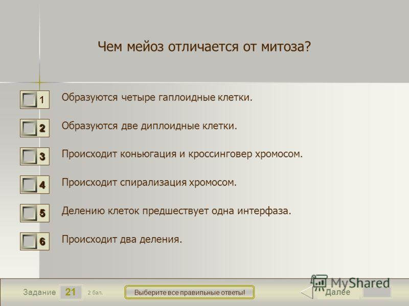 21 Задание Выберите все правильные ответы! Чем мейоз отличается от митоза? Образуются четыре гаплоидные клетки. Образуются две диплоидные клетки. Происходит коньюгация и кроссинговер хромосом. Происходит спирализация хромосом. Делению клеток предшест