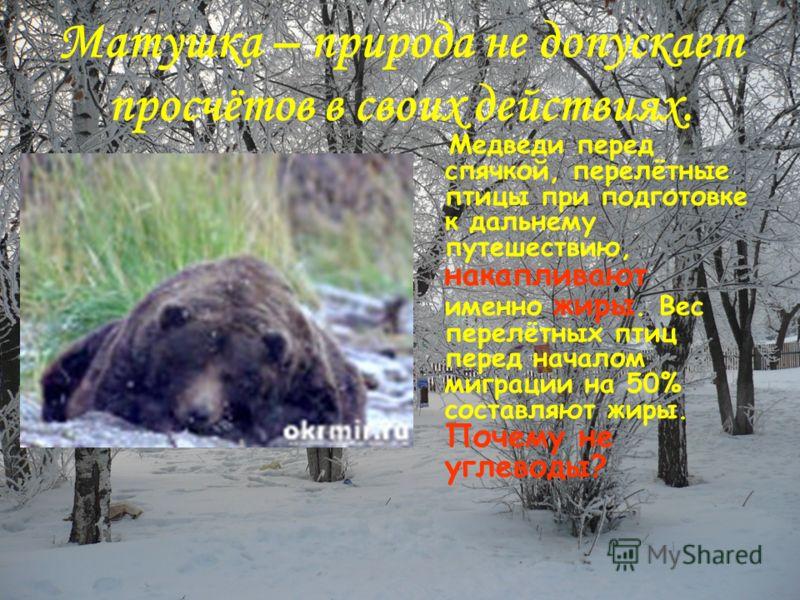 Матушка – природа не допускает просчётов в своих действиях. Медведи перед спячкой, перелётные птицы при подготовке к дальнему путешествию, накапливают именно жиры. Вес перелётных птиц перед началом миграции на 50% составляют жиры. Почему не углеводы?