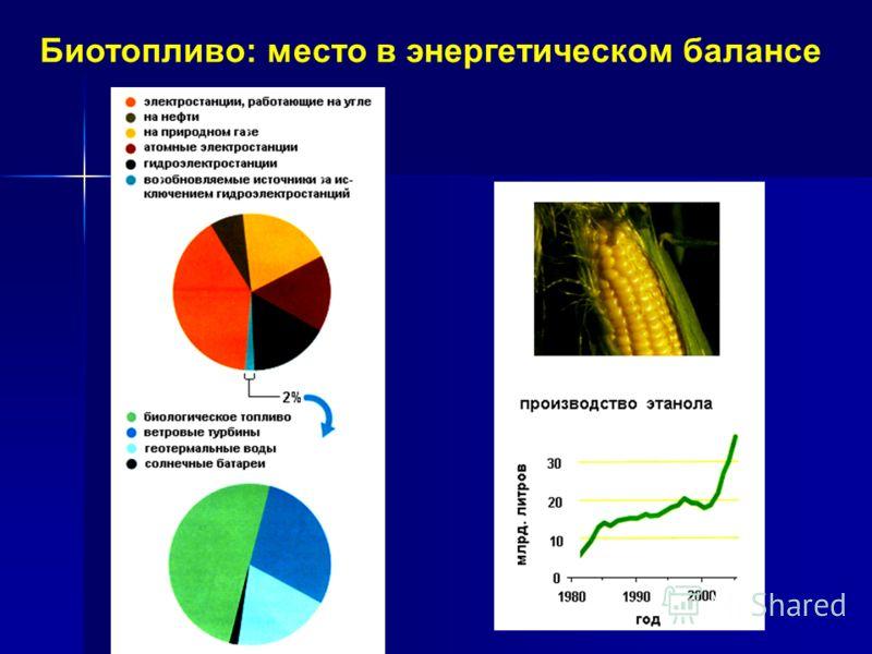 Биотопливо: место в энергетическом балансе