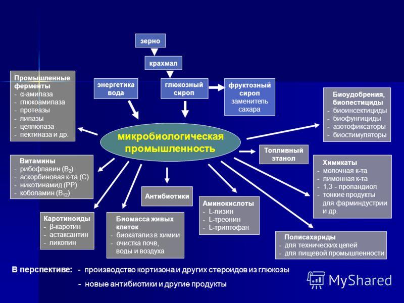 Биомасса живых клеток - биокатализ в химии - очистка почв, воды и воздуха Каротиноиды - β-каротин - астаксантин - ликопин энергетика вода Полисахариды - для технических целей - для пищевой промышленности Промышленные ферменты - α-амилаза - глюкоамила