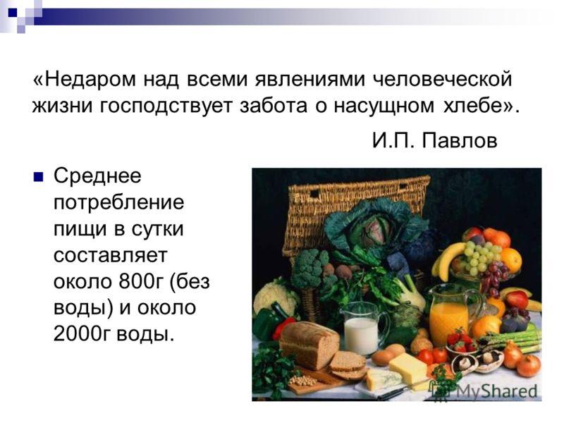 «Недаром над всеми явлениями человеческой жизни господствует забота о насущном хлебе». И.П. Павлов Среднее потребление пищи в сутки составляет около 800г (без воды) и около 2000г воды.