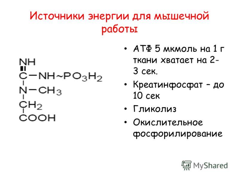 Источники энергии для мышечной работы АТФ 5 мкмоль на 1 г ткани хватает на 2- 3 сек. Креатинфосфат – до 10 сек Гликолиз Окислительное фосфорилирование