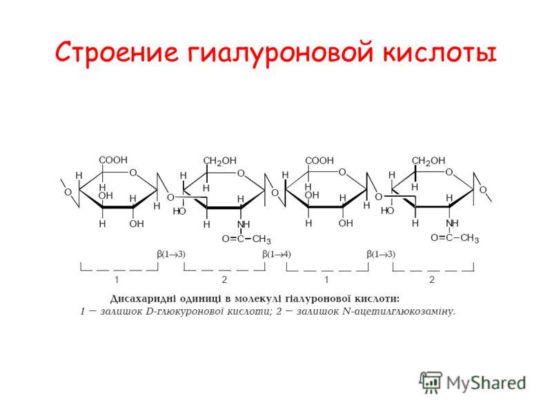 Строение гиалуроновой кислоты