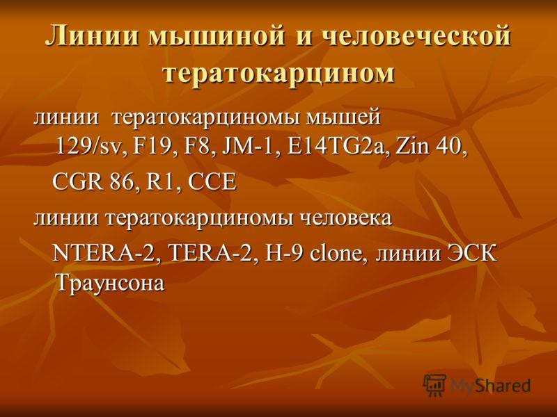 Линии мышиной и человеческой тератокарцином линии тератокарциномы мышей 129/sv, F19, F8, JM-1, E14TG2a, Zin 40, CGR 86, R1, CCE CGR 86, R1, CCE линии тератокарциномы человека NTERA-2, TERA-2, H-9 clone, линии ЭСК Траунсона NTERA-2, TERA-2, H-9 clone,