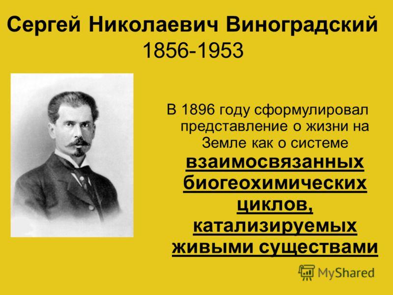 Сергей Николаевич Виноградский 1856-1953 В 1896 году сформулировал представление о жизни на Земле как о системе взаимосвязанных биогеохимических циклов, катализируемых живыми существами