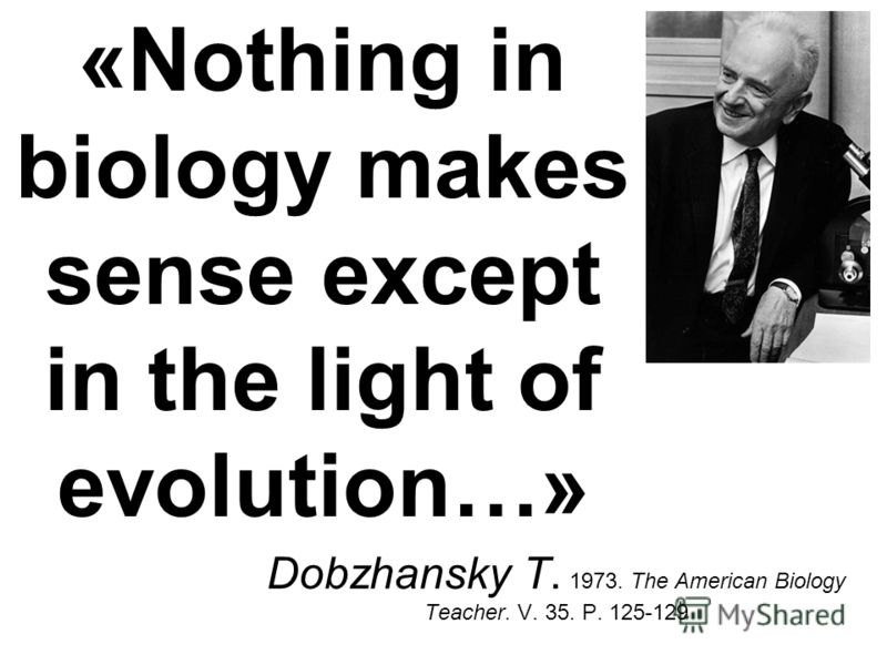«Nothing in biology makes sense except in the light of evolution…» Dobzhansky T. 1973. The American Biology Teacher. V. 35. P. 125-129
