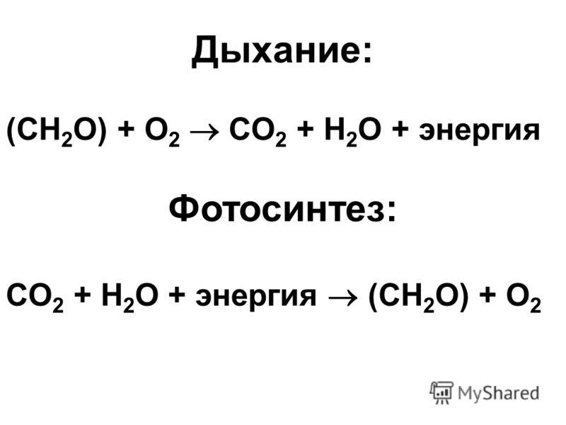 Дыхание: (CH 2 O) + O 2 CO 2 + H 2 O + энергия Фотосинтез: CO 2 + H 2 O + энергия (CH 2 O) + O 2