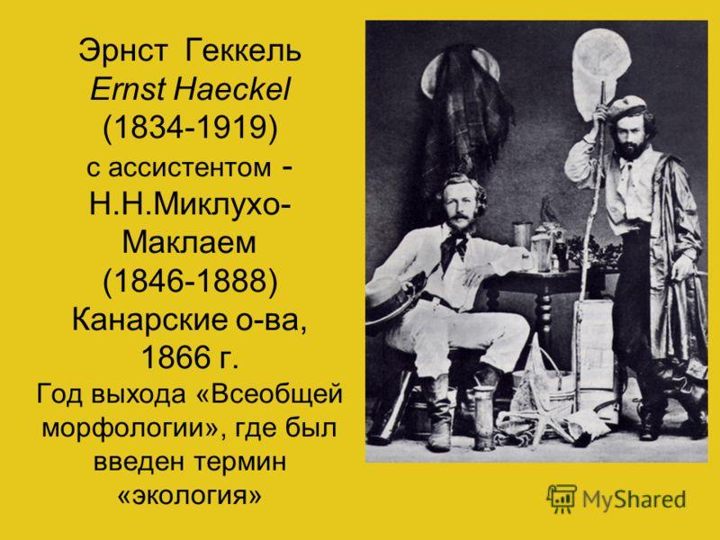 Эрнст Геккель Ernst Haeckel (1834-1919) c ассистентом - Н.Н.Миклухо- Маклаем (1846-1888) Канарские о-ва, 1866 г. Год выхода «Всеобщей морфологии», где был введен термин «экология»