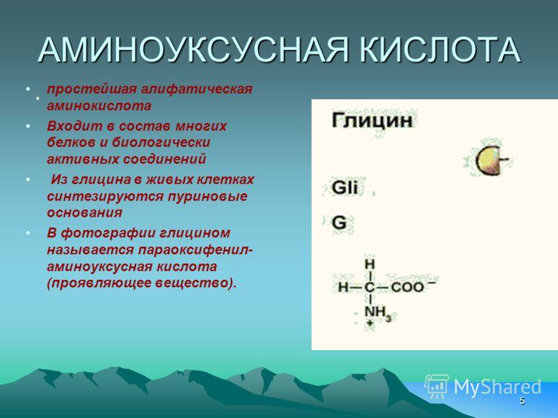 5 АМИНОУКСУСНАЯ КИСЛОТА. простейшая алифатическая аминокислота Входит в состав многих белков и биологически активных соединений Из глицина в живых клетках синтезируются пуриновые основания В фотографии глицином называется параоксифенил- аминоуксусная
