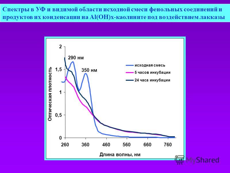 Спектры в УФ и видимой области исходной смеси фенольных соединений и продуктов их конденсации на Al(OH)x-каолините под воздействием лакказы 350 нм 290 нм 0 0,5 1 1,5 2 260360460560660760 Длина волны, нм Оптическая плотность исходная смесь 5 часов инк