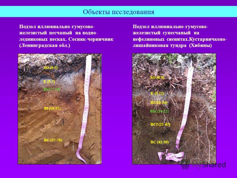 Объекты исследования Подзол иллювиально-гумусово- железистый песчаный на водно- ледниковых песках. Сосняк-черничник (Ленинградская обл.) E (5-7) АО (0-5) Bhf (7-10) Bf (10-37) ВС (37-70) Подзол иллювиально-гумусово- железистый супесчаный на нефелинов