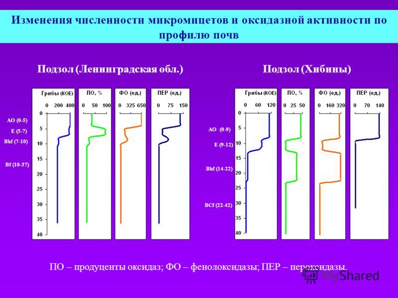 АО (0-5) E (5-7) Bhf (7-10) Bf (10-37) АО (0-9) E (9-12) Bhf (14-22) BСf (22-42) Подзол (Ленинградская обл.)Подзол (Хибины) Изменения численности микромицетов и оксидазной активности по профилю почв ПО – продуценты оксидаз; ФО – фенолоксидазы; ПЕР –