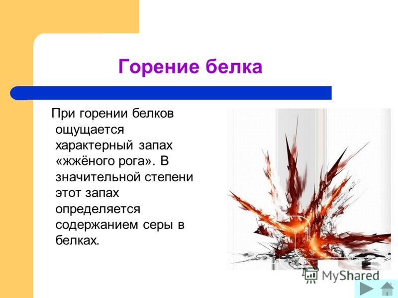 Горение белка При горении белков ощущается характерный запах «жжёного рога». В значительной степени этот запах определяется содержанием серы в белках.