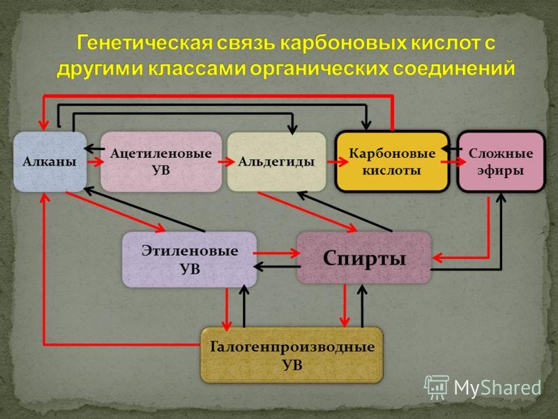 Карбоновые кислоты Сложные эфиры Альдегиды Ацетиленовые УВ Алканы Спирты Этиленовые УВ Галогенпроизводные УВ