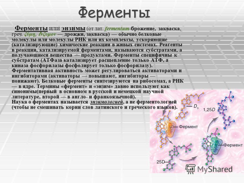 Ферменты Реагенты в реакции, катализируемой ферментами, называются субстратами, а получающиеся вещества продуктами. Ферменты специфичны к субстратам (АТФаза катализирует расщепление только АТФ, а киназа фосфорилазы фосфолирует только фосфорилазу). Фе