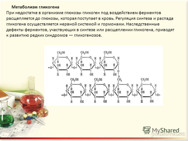 Метаболизм гликогена При недостатке в организме глюкозы гликоген под воздействием ферментов расщепляется до глюкозы, которая поступает в кровь. Регуляция синтеза и распада гликогена осуществляется нервной системой и гормонами. Наследственные дефекты
