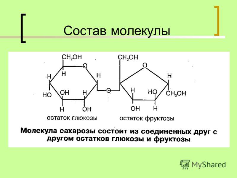 Состав молекулы