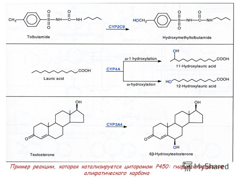 Пример реакции, которая катализируется циторомом P450: гидроксилирование алифатического карбона