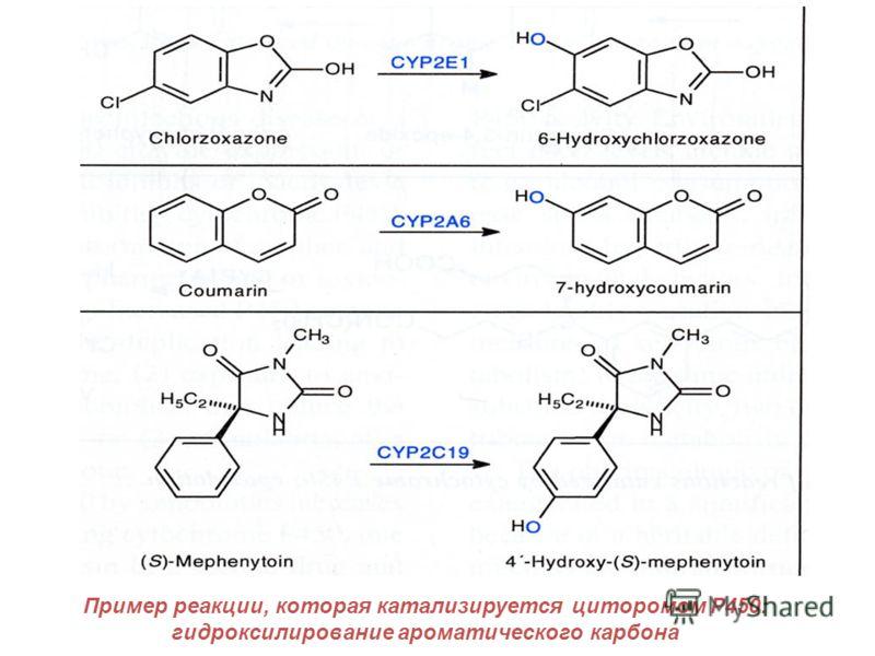 Пример реакции, которая катализируется циторомом P450: гидроксилирование ароматического карбона