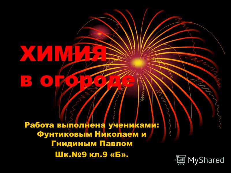 Павлом Шк.9 кл.9 «Б».