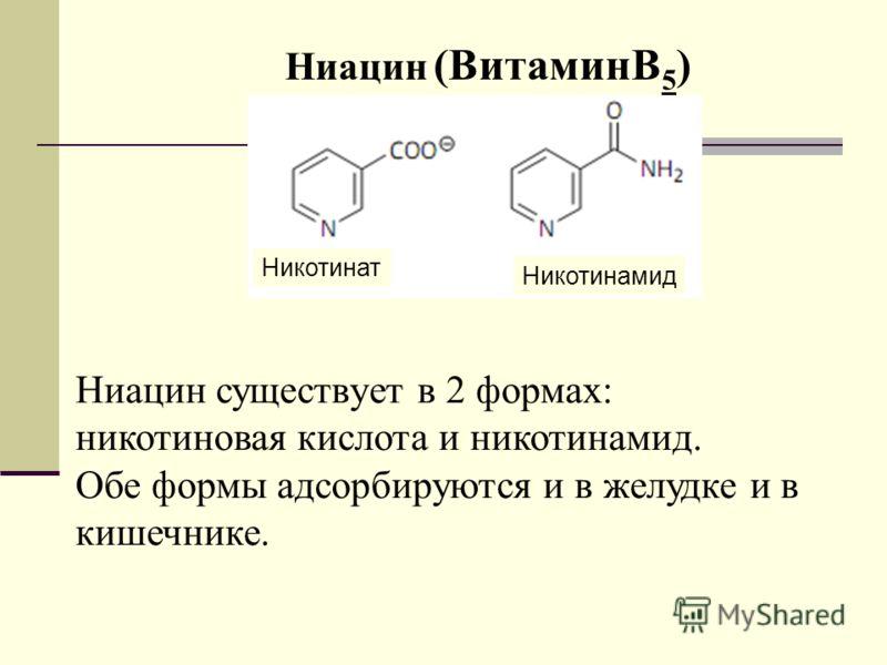 Ниацин (ВитаминB 5 ) Ниацин существует в 2 формах: никотиновая кислота и никотинамид. Обе формы адсорбируются и в желудке и в кишечнике. Никотинат Никотинамид