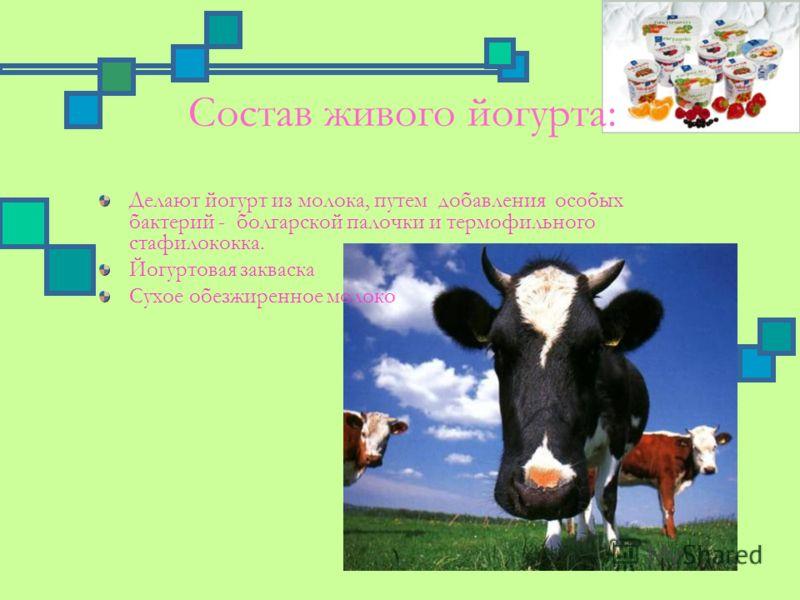 Состав живого йогурта: Делают йогурт из молока, путем добавления особых бактерий - болгарской палочки и термофильного стафилококка. Йогуртовая закваска Сухое обезжиренное молоко