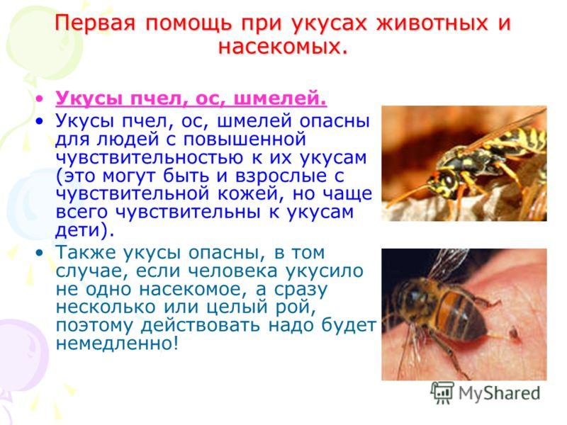 Первая помощь при укусах животных и насекомых. Укусы пчел, ос, шмелей. Укусы пчел, ос, шмелей опасны для людей с повышенной чувствительностью к их укусам (это могут быть и взрослые с чувствительной кожей, но чаще всего чувствительны к укусам дети). Т