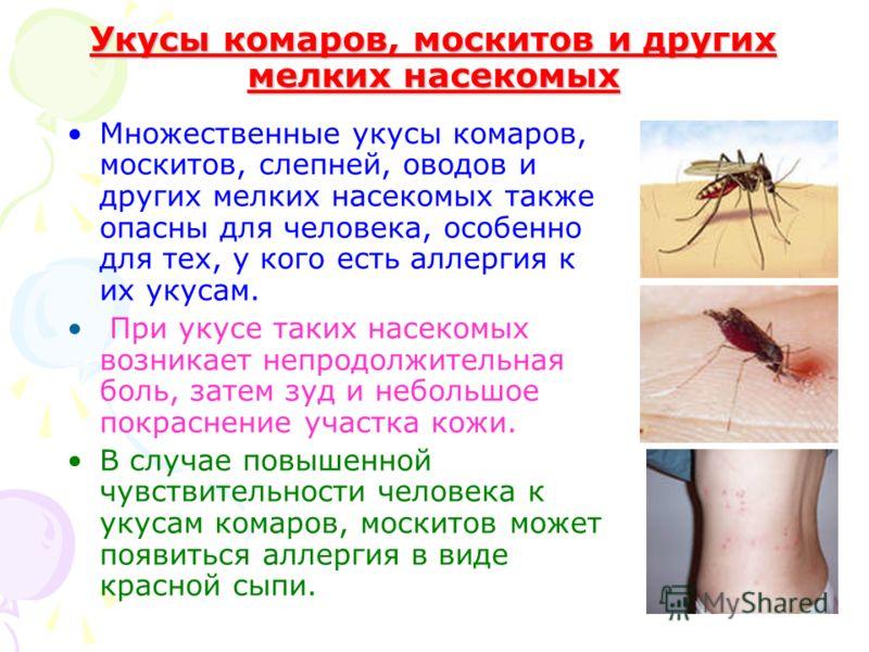Укусы комаров, москитов и других мелких насекомых Множественные укусы комаров, москитов, слепней, оводов и других мелких насекомых также опасны для человека, особенно для тех, у кого есть аллергия к их укусам. При укусе таких насекомых возникает непр