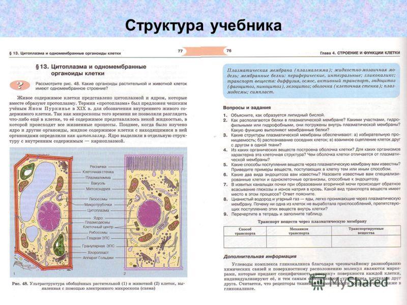 Скачать бесплатно а.в теремов р.а петросова биология 10 класс учебник