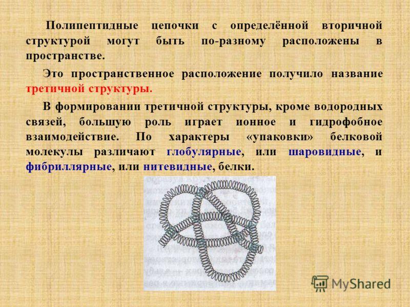 Полипептидные цепочки с определённой вторичной структурой могут быть по-разному расположены в пространстве. Это пространственное расположение получило название третичной структуры. В формировании третичной структуры, кроме водородных связей, большую
